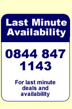Last minute holiday availability